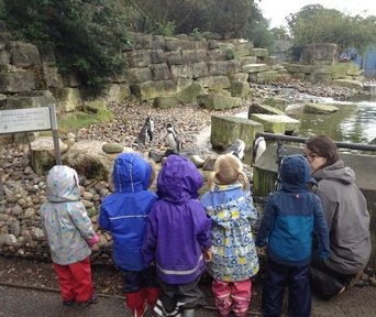 Children learning about penguins