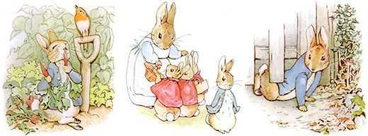 Peter Rabbit film 'wrong' to show 'allergy bullying' scene