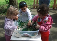 St Mary's Summerstown Montessori Nursery School, London, London