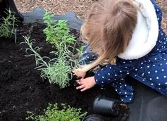 Tops Day Nursery - Gillingham, Gillingham, Dorset