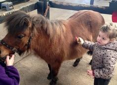 Twizzle Tops Day Nursery South Woodham, Chelmsford, Essex