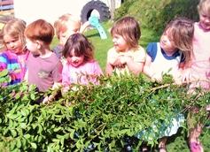 Hurly Burly Day Nursery, St Agnes, Cornwall