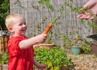 Rafles Day Nursery - Cheshunt, Waltham Cross, Hertfordshire
