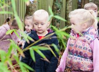 Pixieland Day Nursery - Mannamead