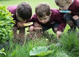 Thorpe House School Nursery (Thorpe Explorers Nursery'), Gerrards Cross, Buckinghamshire